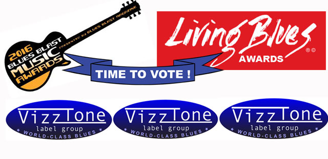 Vote wide bannerVT2